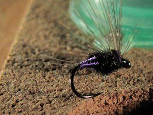 Morado pavo real mosca ahogada principio temporada