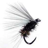 Mosca de León ahogada hormiga reina sin muerte