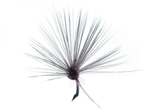 Mosca ahogada salmón oscuro indio claro cm 3