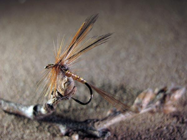 Mosca seca Efémera salmón y alas de gallo de León Indio rubión sin muerte 1