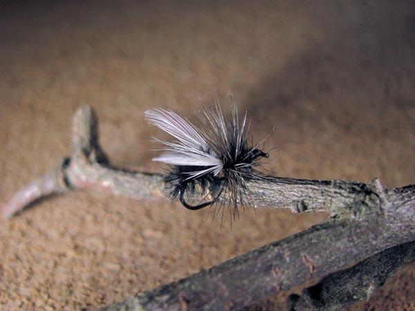 Mosca seca Hormiga alada #81 pluma de pavo real y gallo de León sin muerte #4