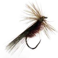 Tricóptero marrón pardo oscuro modelo 16