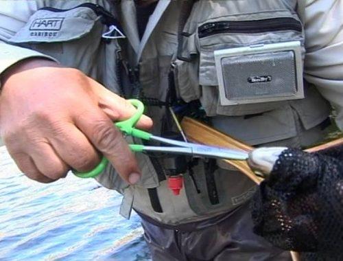 Locos por la pesca capitulo 9