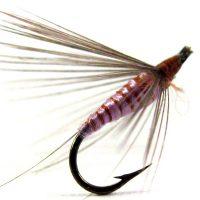 Lila indio mosca ahogada con pluma de gallo de León