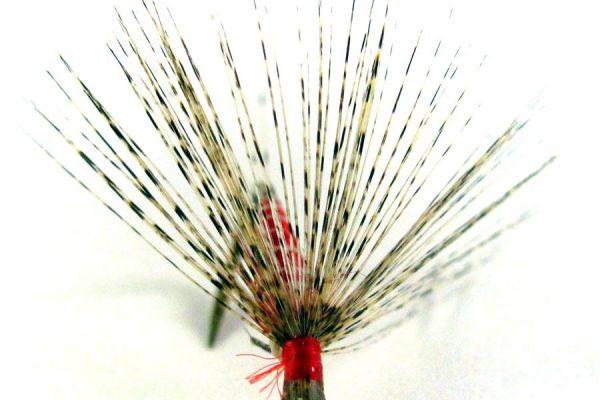 Mosca de León ahogada rojo vivo con pluma de gallo Pardo