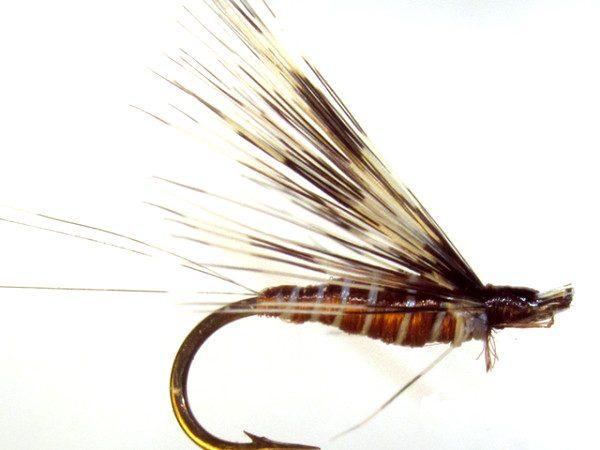 Mosca de León ahogada Tabaco marrón pardo