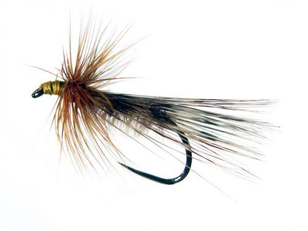 Tricóptero avestruz claro y pluma de gallo de León pardo acerado modelo 10