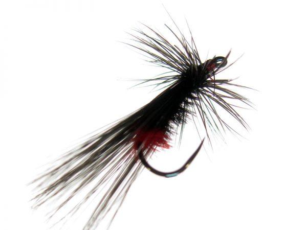 Tricóptero falangista pluma de avestruz y pluma de león Indio modelo 18