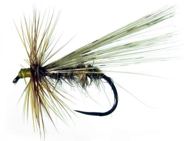 Tricóptero Oreja de liebre claro y pluma de gallo de León pardo modelo 25