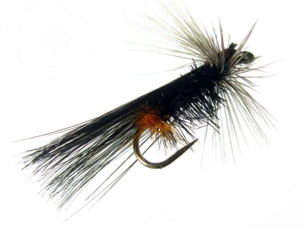 tricóptero avestruz negro naranja y pluma de gallo de León