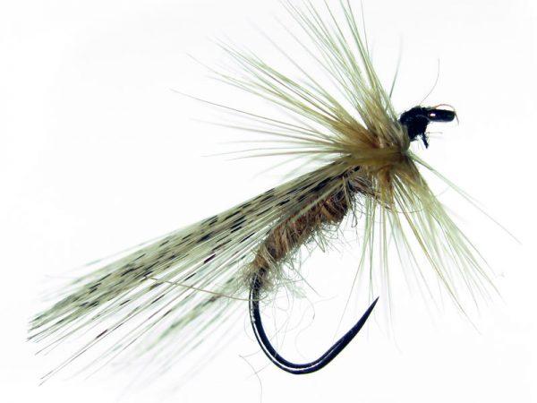 Tricóptero sm oreja de liebre y pluma de gallo de León pardo modelo 36