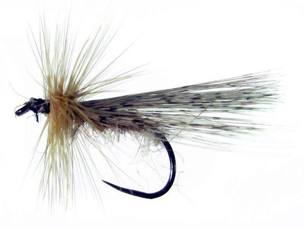 Tricóptero oreja de liebre y pluma de gallo de León pardo modelo 36