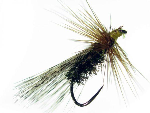 Tricóptero sm pavo real largo y tejadillo en pluma de gallo de León pardo modelo 37