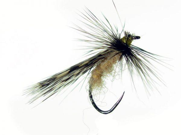 Tricóptero sm antrón carne y tejadillo en pluma de gallo de León pardo oscuro modelo 38