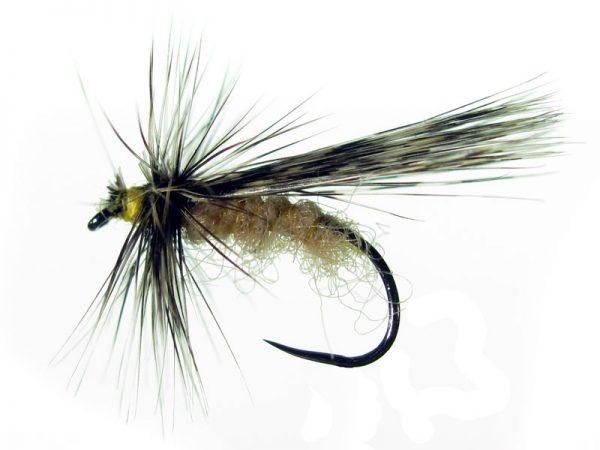 Tricóptero antrón carne y tejadillo en pluma de gallo de León pardo oscuro modelo 38