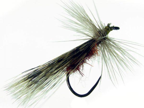 Tricóptero sm liebre rojizo y tejadillo en pluma de gallo de León pardo oscuro modelo 39