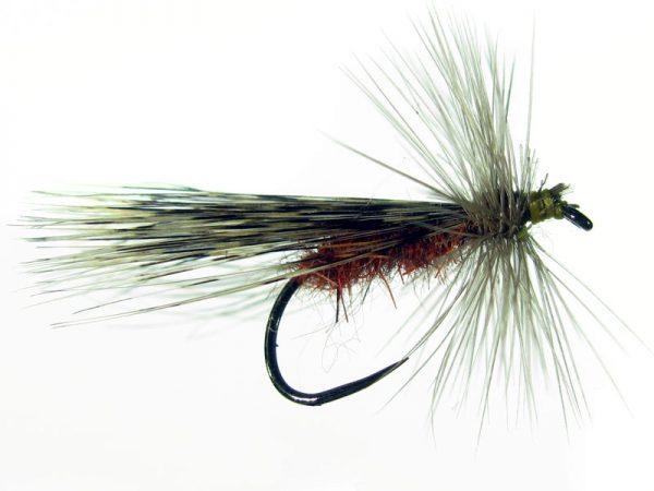 Tricóptero liebre rojizo y tejadillo en pluma de gallo de León pardo oscuro modelo 39
