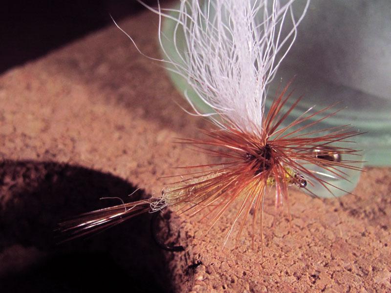 Efemera parachute rabo de ternera